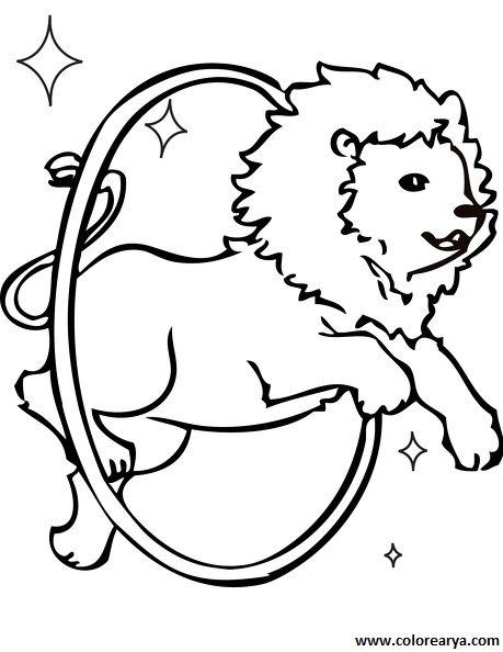 dibujos para pintar: el león.