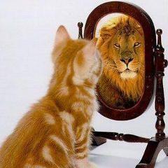 Qu'est-ce que le trouble de personnalité narcissique? (Définition, critères)