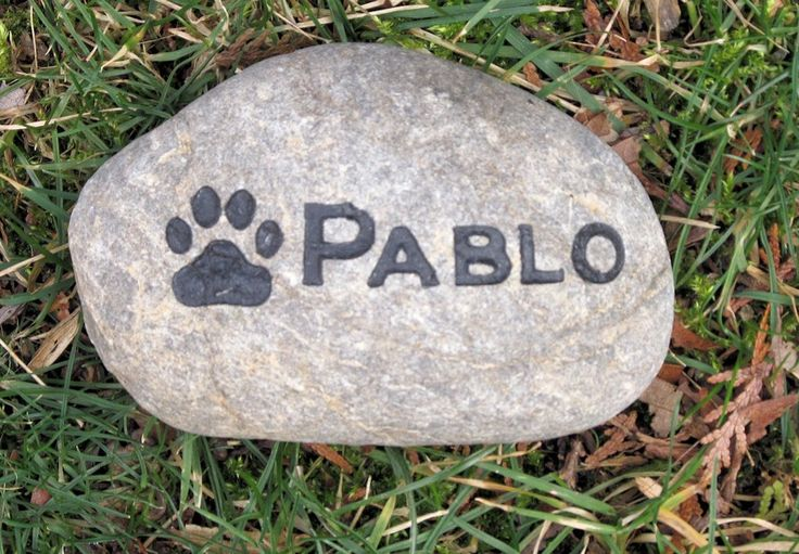 Pet Memorial Stone Dog - Cat Garden Memorial 5-6 Inch Memorial Pet Stone Grave Marker with Paw Print #burial-stone #cat-marker #cat-memorial