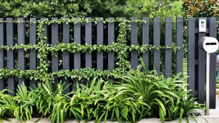 6 of the best modern fence designs