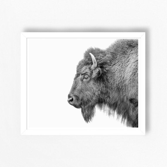 Print - Bison print with a subtle canvas texture, also available in colour. INSTANT DOWNLOAD DIGITAL PRINT This contemporary print can either be printed out at home or at a local or online printer. Your order includes 2 high resolution JPEG files that can be printed in a wide range