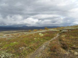 Dovrefjell mountains. THE ST. OLAF'S WAY PILGRIMAGE is the best known pilgrimage in Norway. The Pilgrim's Route, (Pilegrimsleden) also known as St. Olav's Way or the Old Kings' Road, was a pilgrimage route to the Nidaros Cathedral in Trondheim, Norway, the site of the tomb of St. Olav. The main route is approximately 640 kilometres (400 mi) long.