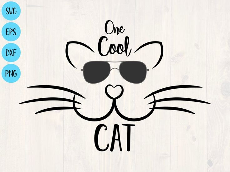 One cool cat svg, png, eps, and dxf shirt and cup design for cricut and silhouette, digital download