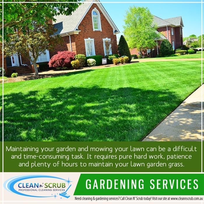 Maintaining your garden and mowing your lawn can be a difficult and time-consuming task. It requires pure hard work, patience and plenty of hours to maintain your lawn garden grass.  Visit our website at www.CleanNScrub.com.au to view our services. #gardening #gardeningservices #cleannscrub You can book a FREE quote for our services by sending us an email to booking@cleannscrub.com.au or contact us on Skype CLEANNSCRUB or phone (07) 3040 3003.