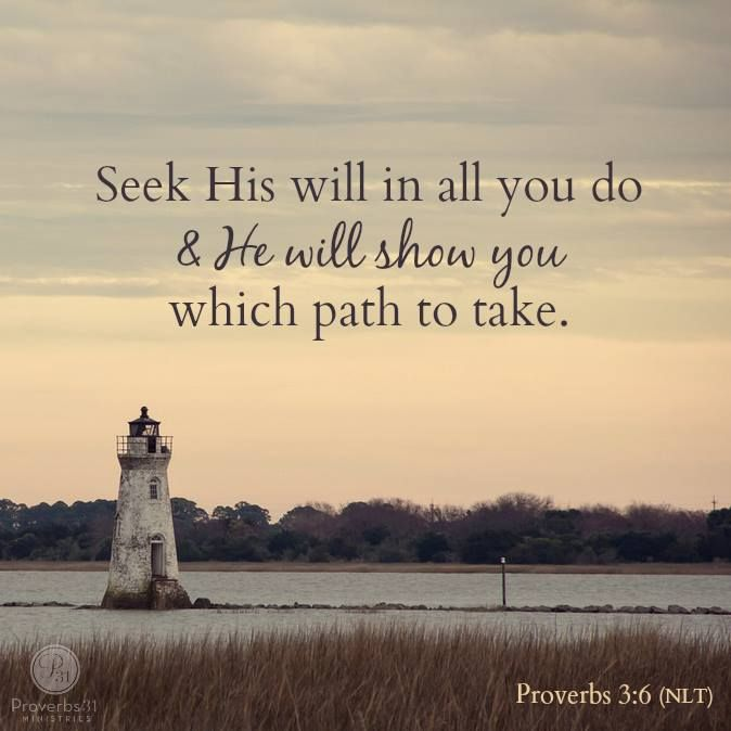 "Photo: ""Seek His will in all you do, and He will show you which path to take."" - Proverbs 3:6:"