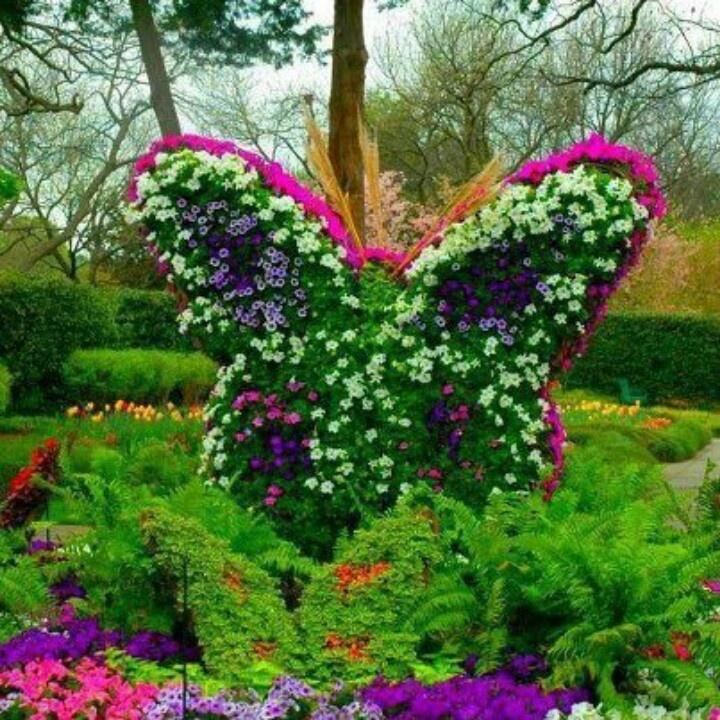 Flower Garden Ideas!