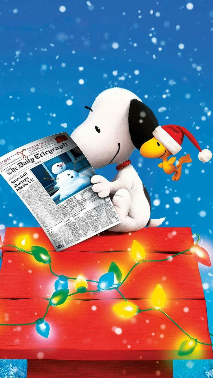 Snoopy Reading a Newspaper and Sitting on His Doghouse Which Is Decorated For Christmas With Woodstock Flying Nearby Wearing a Santa Hat