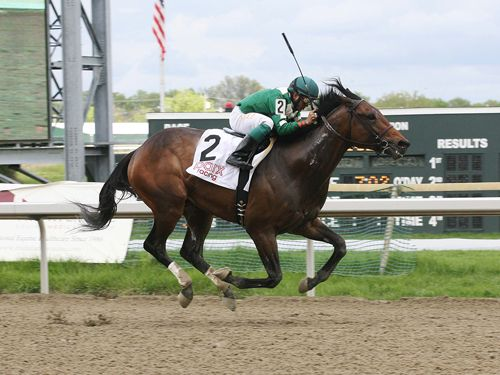 With the Kentucky Derby Presented by Yum! Brands behind us, it's time to see if Nyquist can win the Preakness Stakes and leave Baltimore with a chance at the Triple Crown.