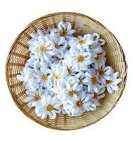 Crochet Daisy PatternCrochet Daisy, Free Pattern, Crochet Flower, Crochet Daisies, Annemarie Haakblog, Flower Girls, Daisies Pattern, Crochet Pattern, Knits
