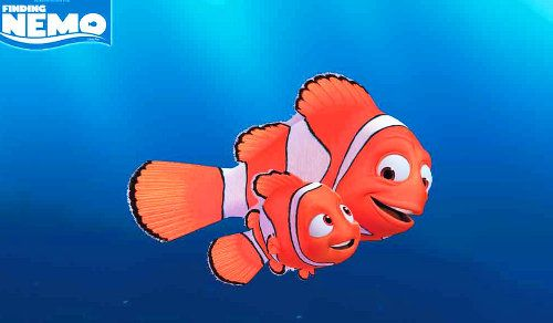 nemo and marlin relationship questions
