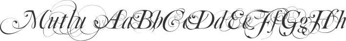 Script Free Fonts   Font Squirrel
