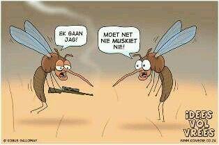 Ek gaan jag... Moet net nie muskiet nie! Idees vol vrees Afrikaanse humor @humor@afrikaans@muskiet@jag