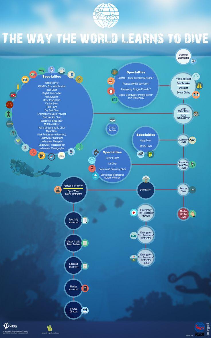 """Infographie pour PADI """"The way the world learns to dive"""" (La façon d'apprendre à plonger dans le monde)  © Signos Com360"""