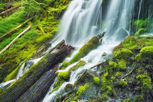 Upper Proxy Falls, Willamette National Forest, Oregon, USA: Stockings Photos, National Forest