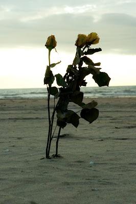 seaside <3