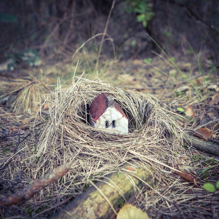 the #woods in #brodyiłżeckie  #raku #house snuggled up in a little bird's #nest fallen from the #tree  #forest #poland #polskielasy #clay #ceramics #domek #focusonsmallthings #littlethings #birdsnest