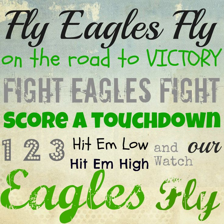 "Philadelphia Eagles fight song! E a g l e s. Would be nice to hang in Billy's ""Eagles's Nest"" man cave."
