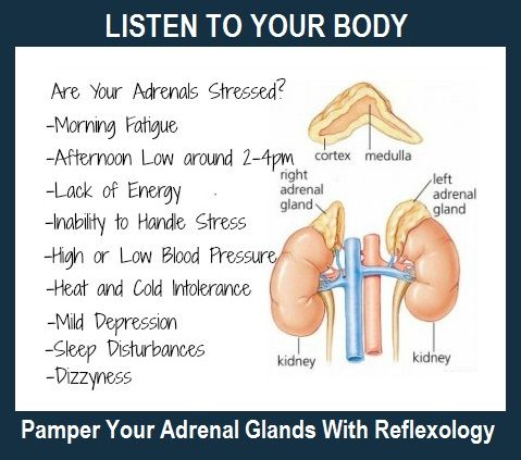 Reflexology for Adrenal Glands... balancedwomensblog.com