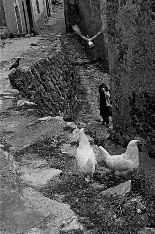 Ferdinando Scianna - Bambina, colombi e galline (San Fratello, Sicily, Italy, 1983.)