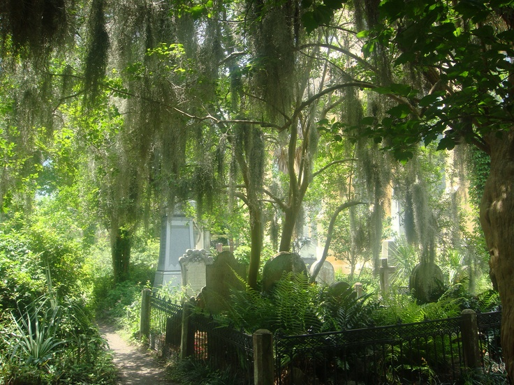 Cemetery in Charleston - eerily peaceful and beautiful