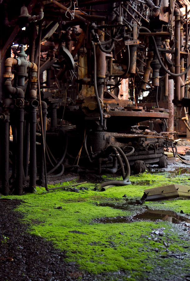 Abandoned glass factory.