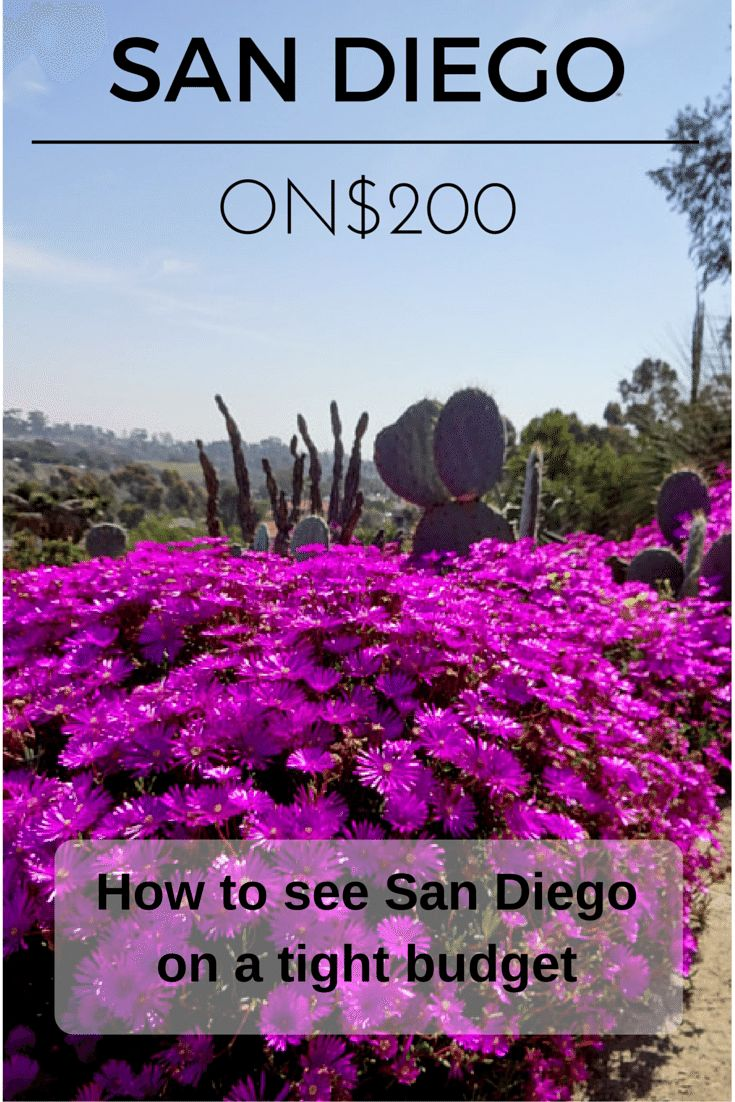 How to see San Diego on a shoestring budget.