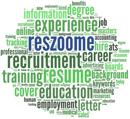 Resume Services | Professional Resumes: Resume Service, Profess Writing, Makeovers Service, Professional Resume, Profess Resume