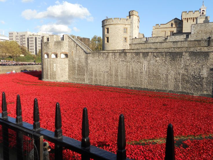 #LondonTower- Poppies on 1st W War Memorial Nov.2014