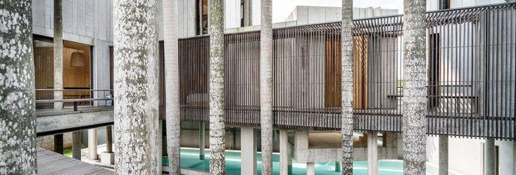 Unik dan dinamisnya rancangan arsitektur Rumah Palem, karya arsitek Andra Matin tidak lepas dari diplomasi dengan keberadaan posisi pohon palem yang dipertahankan.