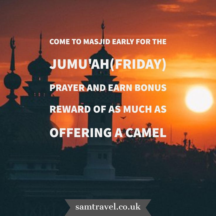 come to Masjid early for the Jumu'ah(Friday) prayer and earn bonus reward of as much as offering a camel 🐫