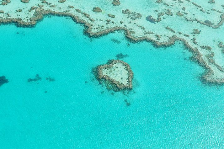 Heart Reef, Great barrier Reef, Australia. photo © Martin Wasilewski.