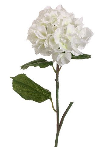 "Artificial Silk Hydrangea Flower in Cream 6.5"" Bloom x 23"" Tall"