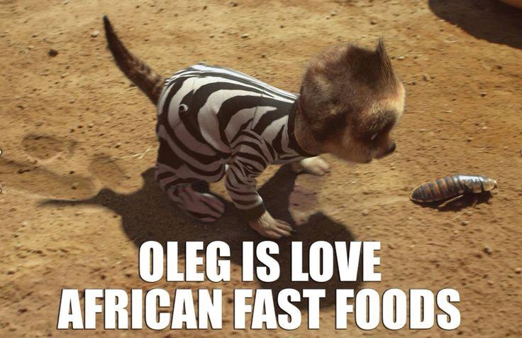 Oleg on Safari