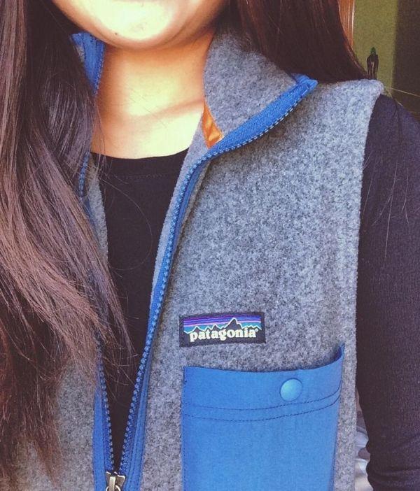Patagonia fleece vest by adriana