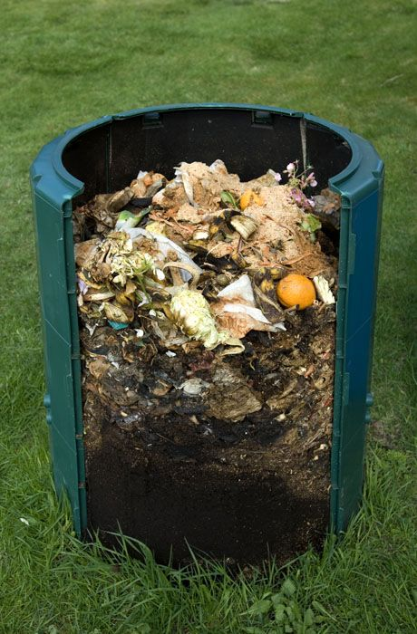 Como fazer compostagem