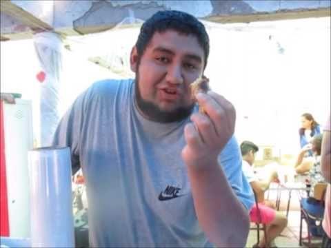 tortilla de tallos de acelga en Santa Olga Chile - YouTube