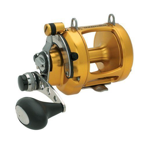 Penn Fishing International VS Series Reels, 12VS 1186238 -- You can find more details by visiting the image link.
