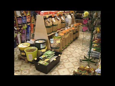Какой корм я покупаю перепелам. quail feed — Яндекс.Видео