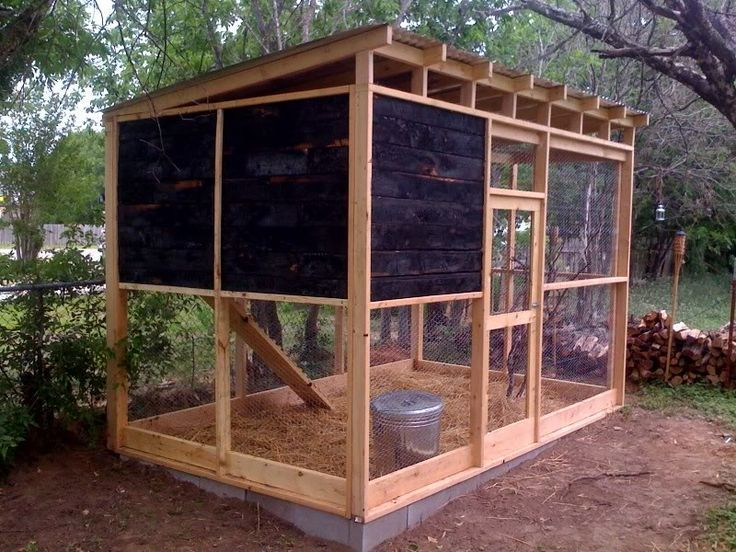 coop Ret: Backyard chickens medium coop