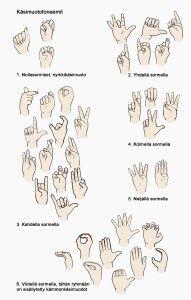 Käsimuodot-viittomat