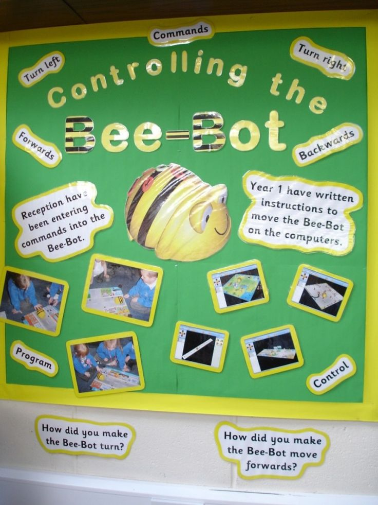 Controlling the Bee-Bot | Teaching Photos