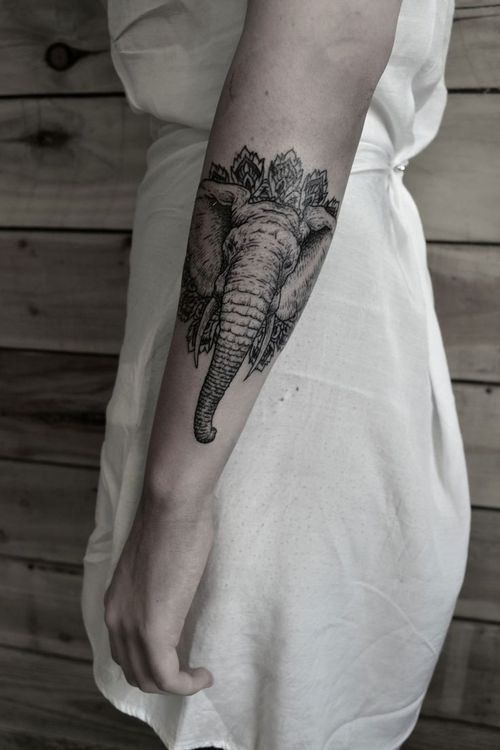 elephant tattoo for @Hillary Fisher                                                                                                                                                     More