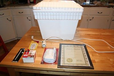 The Empowered Mom: How to Make a Homemade Egg Incubator - one way to improve on this would be to 1.-add a fan,  2.- put bottles of water in the bottom to help keep the temperature stable.......