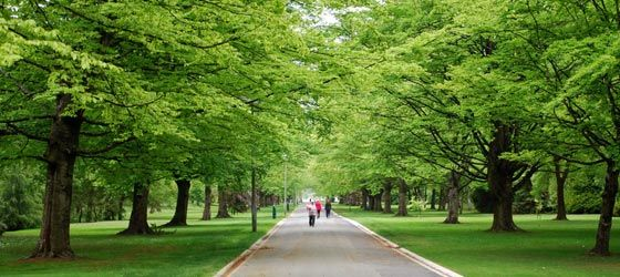 Queens Park, Invercargill #invercargill #newzealand #nz #travel