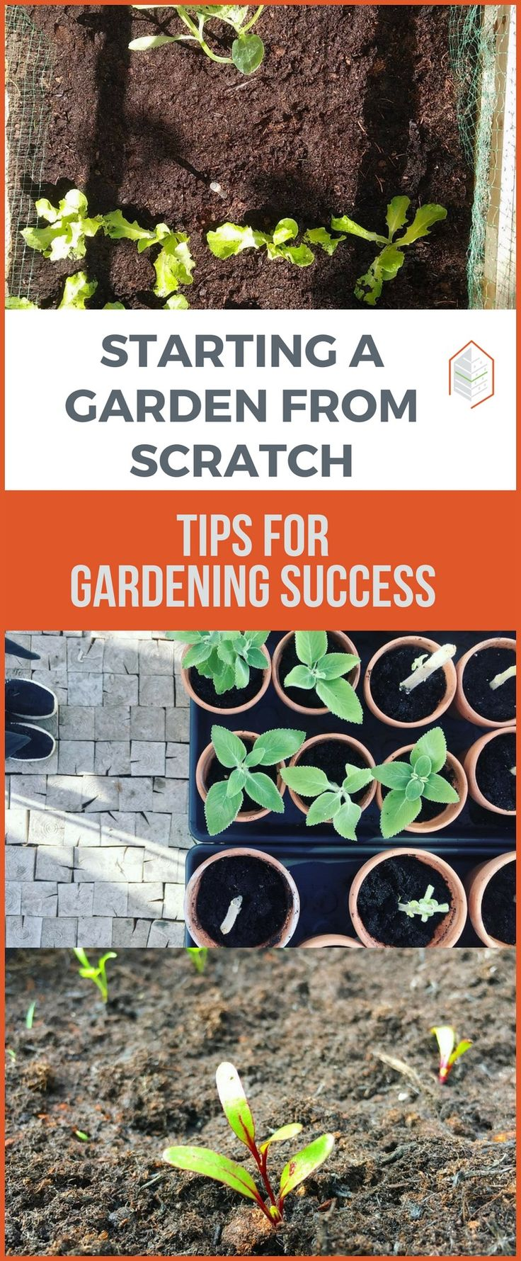 Starting a Garden from Scratch: Tips for Gardening Success Starting a garden from scratch is not hard. Gardening can be learnt through experience. These simple steps will be helpful to you in starting a garden. #urbangardening #gardening #diy #garden #UGRPOST