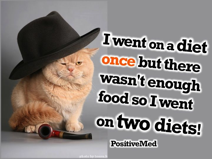 Pin By Terra Lyn On Uplifting Funny Diet Quotes Cat Diet Diet Motivation Funny