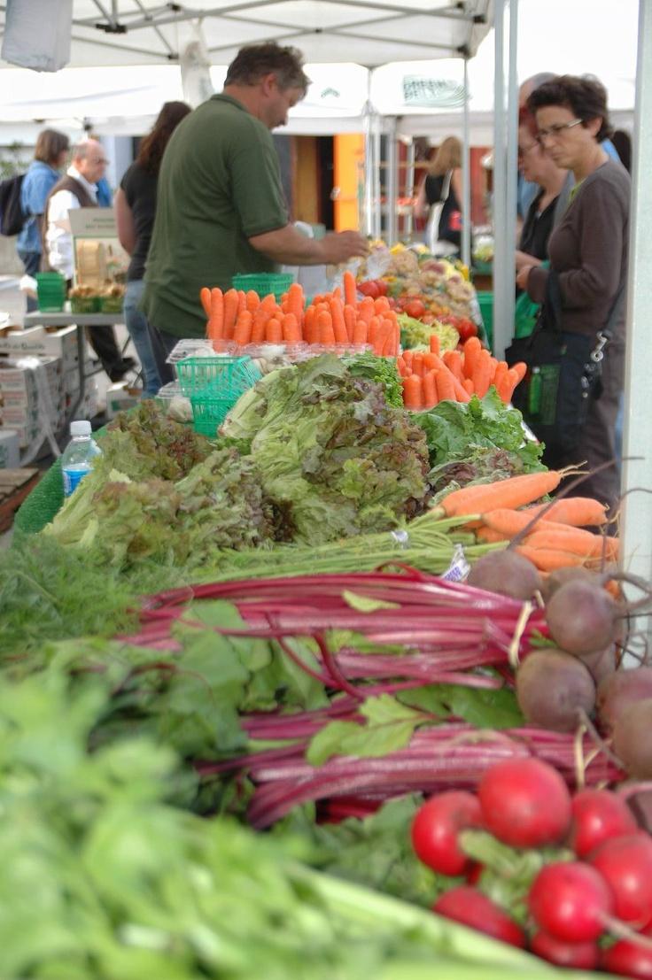 Farmers Market - Main St. Markham