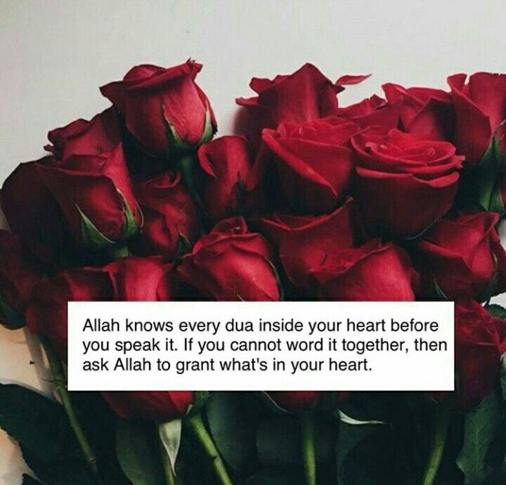 Allah knows what is in every heart Surah Al Mulk verse 13