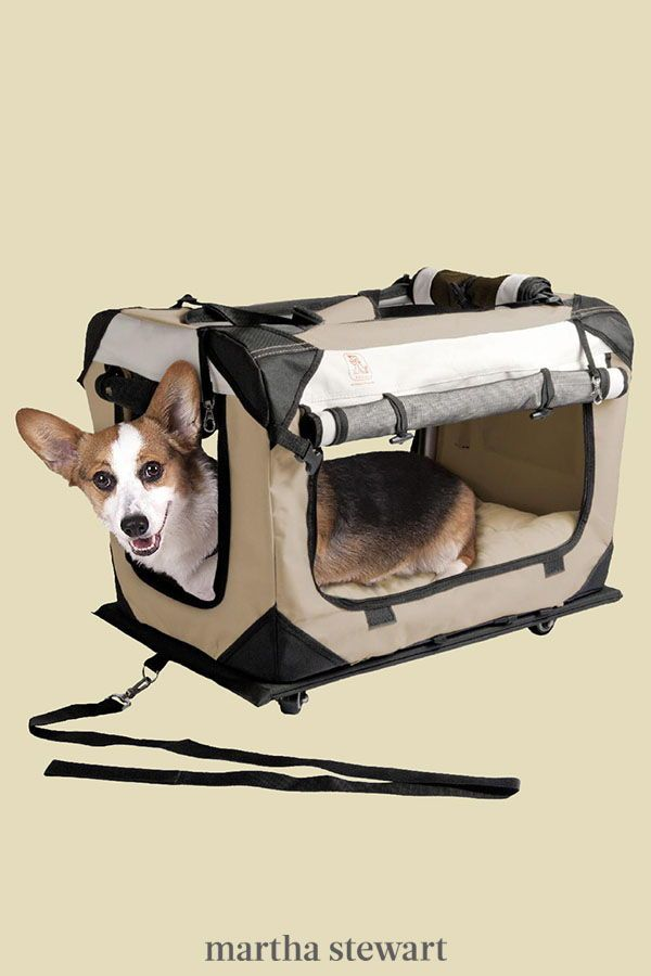 How To Choose The Best Dog Carrier For Your Pet Plus Some Of Our Favorites On The Market Right Now In 2020 Dog Carrier Pets Dog Toys