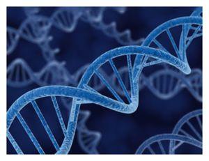 epiDNA428_n